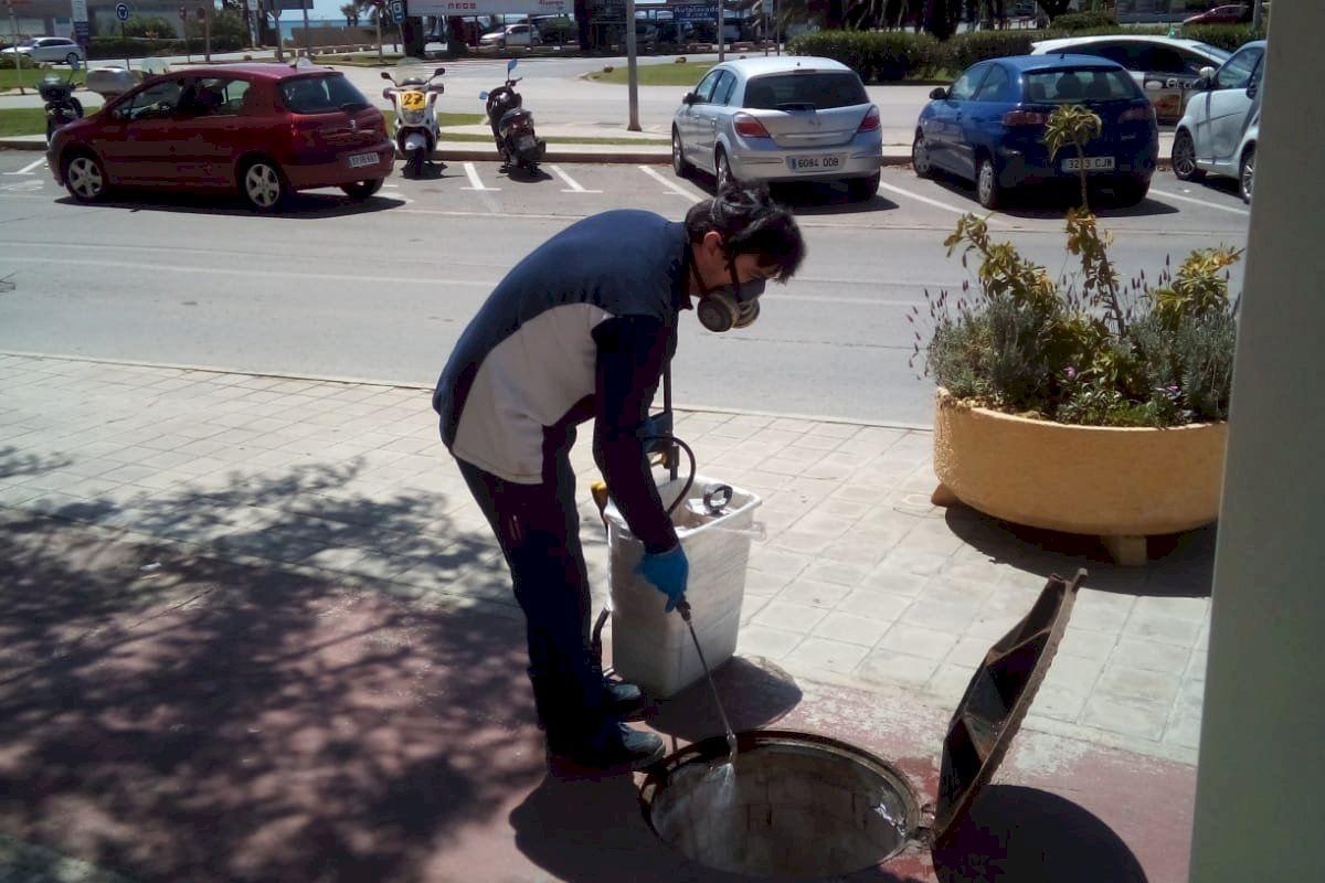 Alboraya sigue reforzando los tratamientos contra insectos y ratas