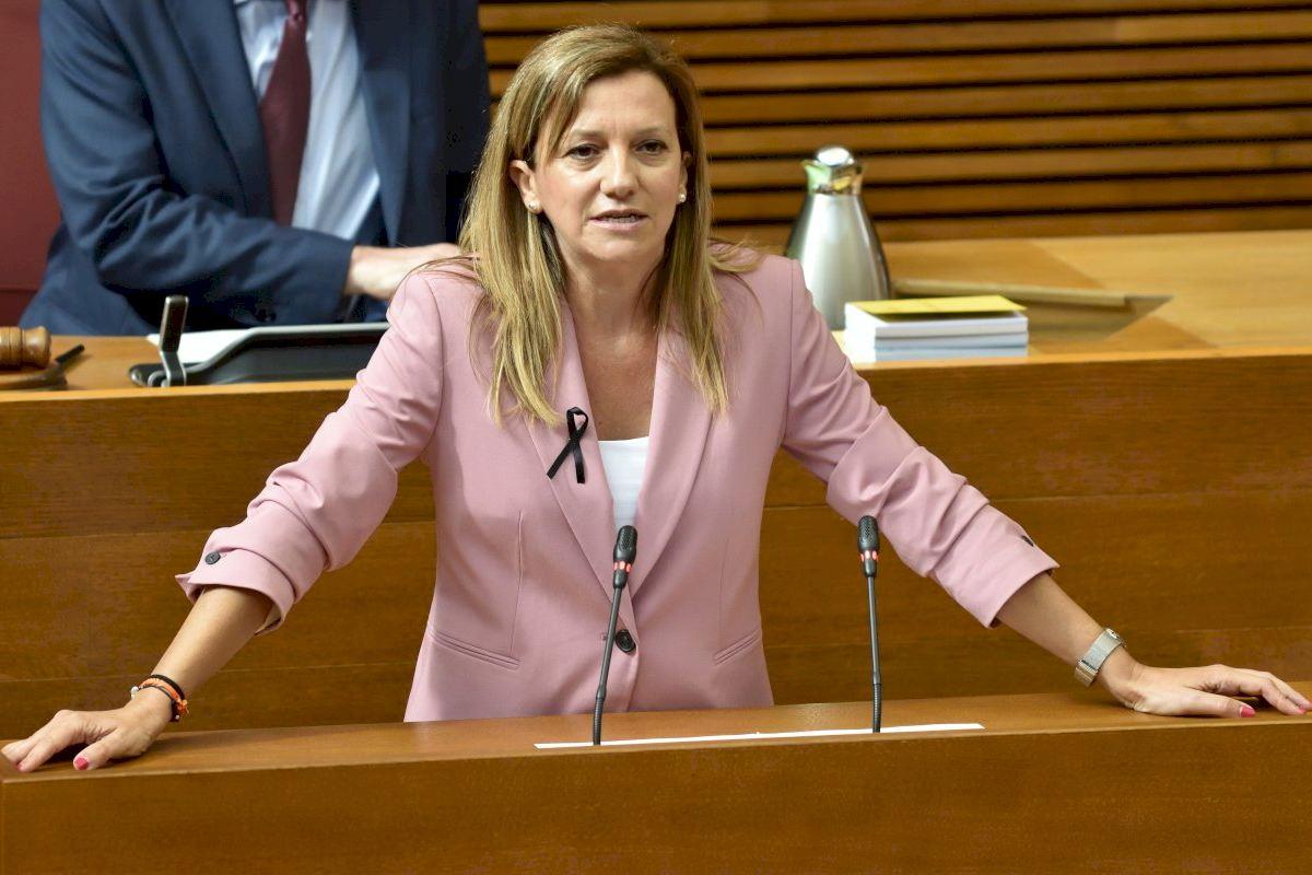 Cs exige la comparecencia de Oltra en Les Corts para que explique el plan de acción contra la Covid-19 en las residencias