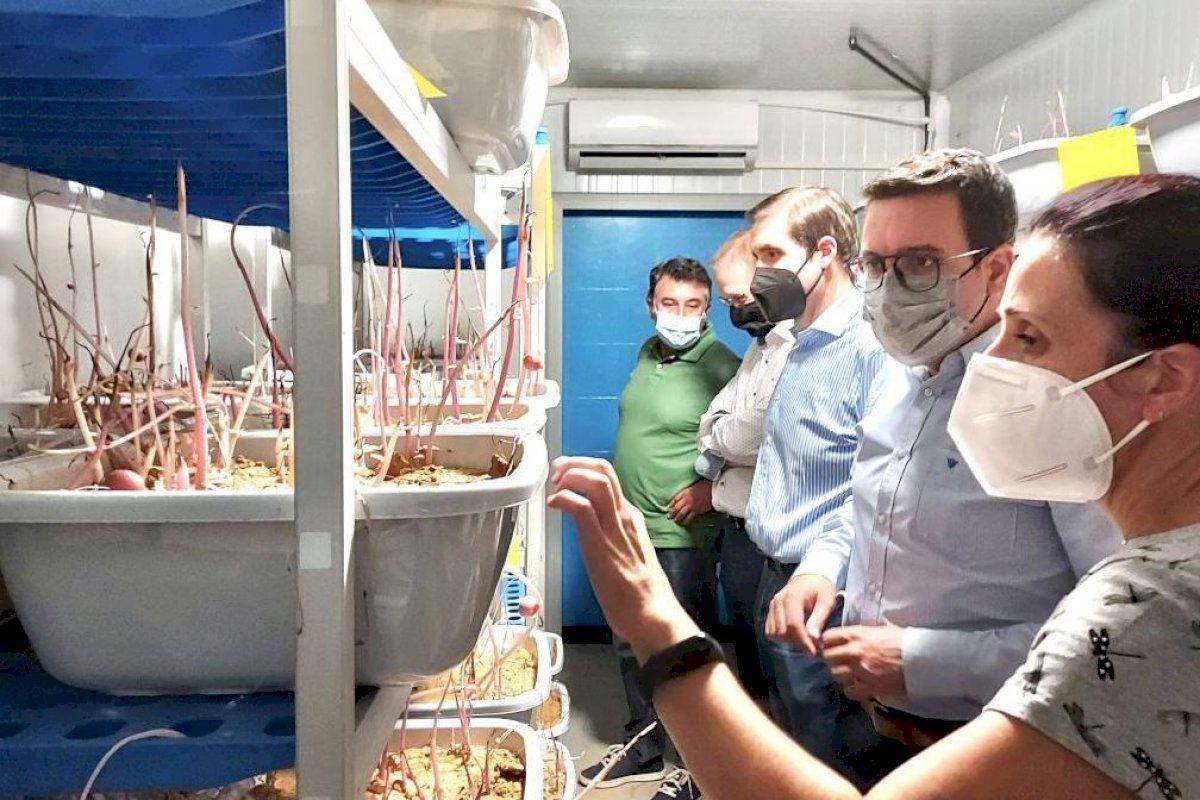 Casabó (PP) visita las instalaciones de la Cooperativa Católico Agraria de Vila-real