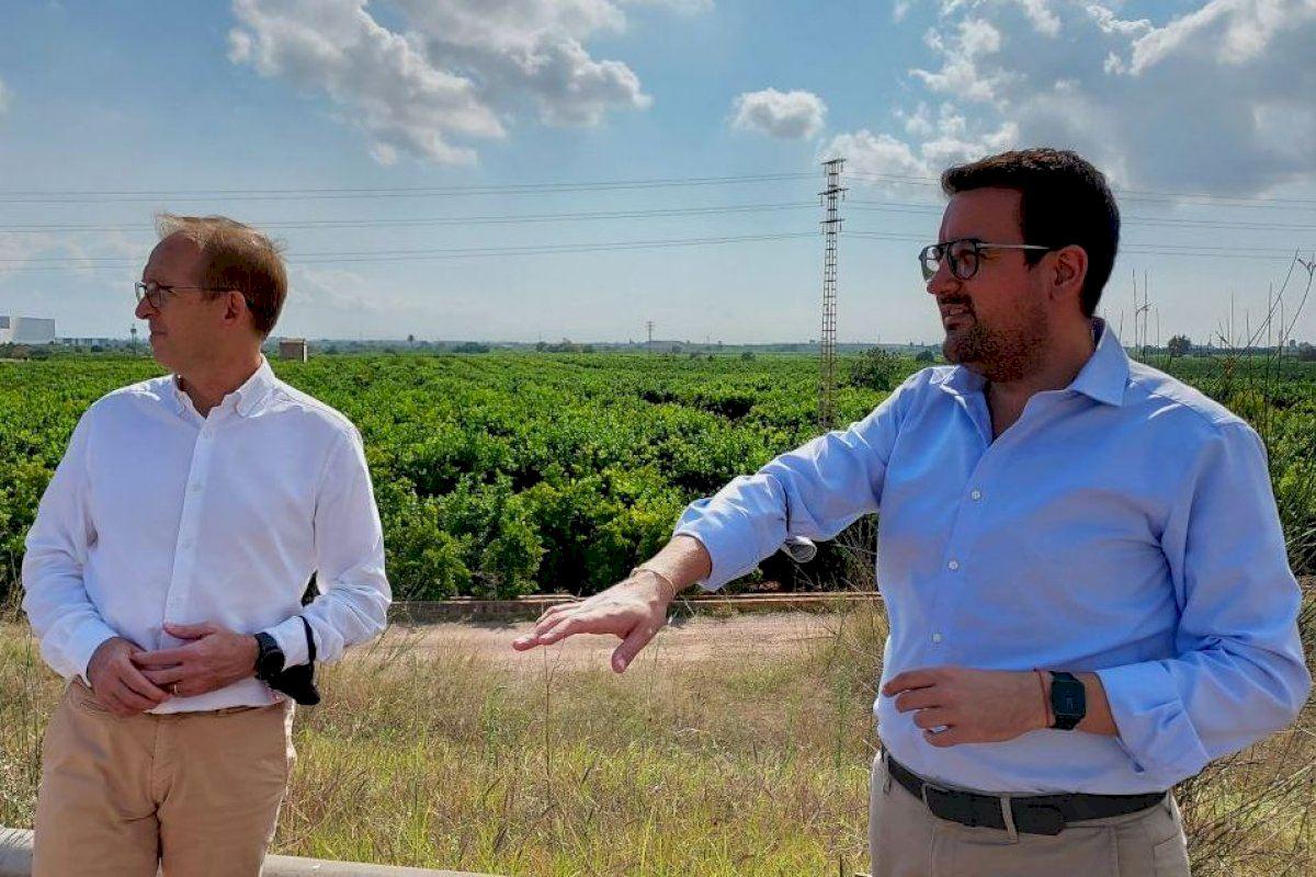 El PP pide más vigilancia en el campo en el inicio de la campaña de recogida de la naranja