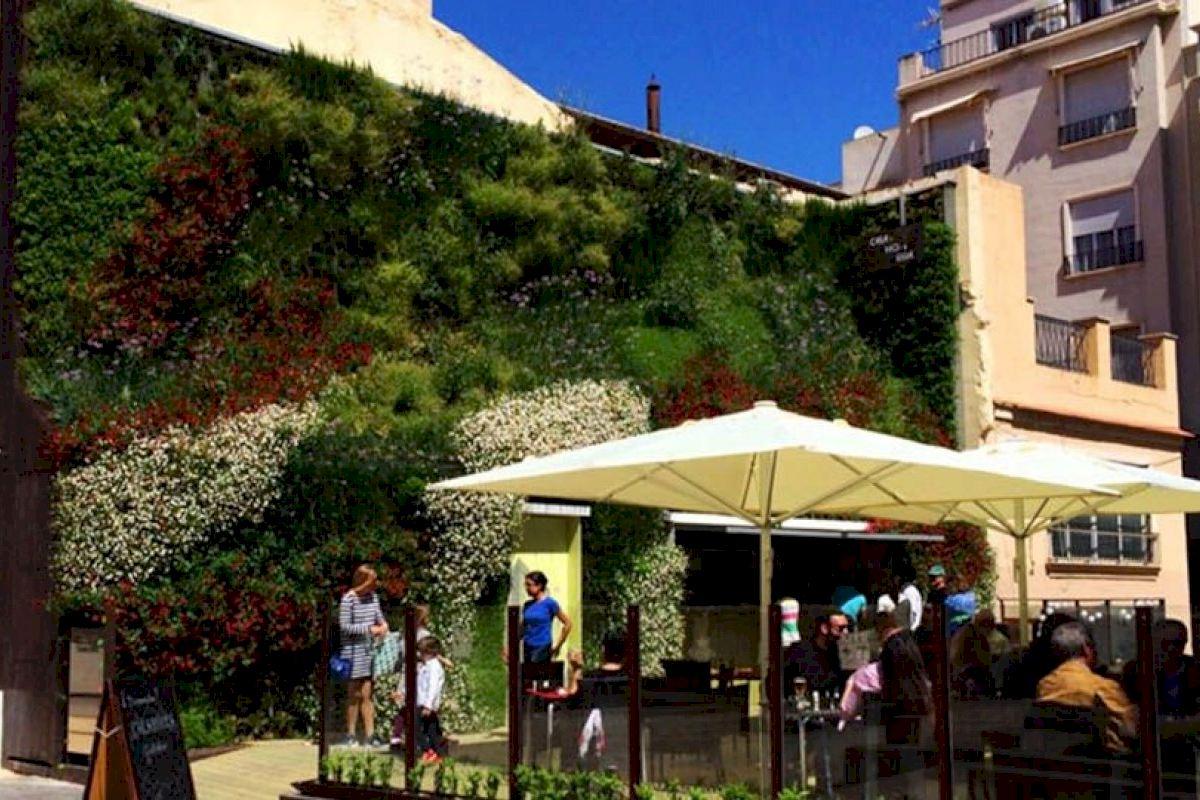 """García-Ontiveros: """"Los techos verdes y jardines verticales mejoran la calidad del aire que respiramos y beneficia al bolsillo de los ilicitanos al suponer un ahorro energético"""""""