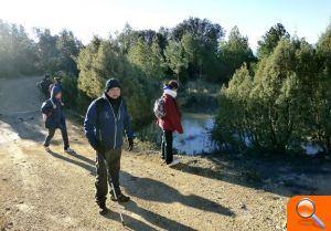 Los senderistas recorren el noroeste de la Sierra Espadán - el periodic